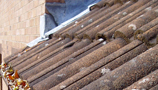Roofing & Insulation (2)