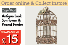 Antique Look Sunflower and Peanut Feeder  -  – Now Only £15.00