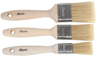 Transform Woodstain and Varnish Brush 3 pack – Now Only £5.00