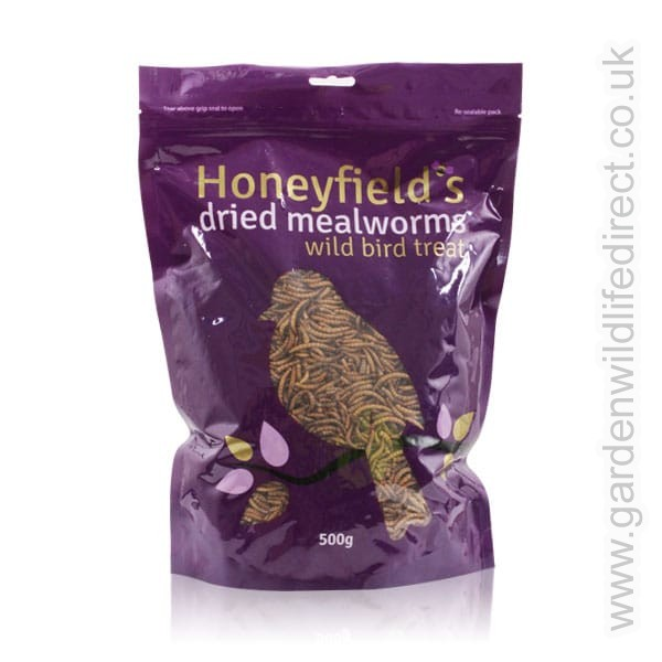 Mealworms 0.1kg – Now Only £2.00