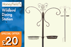 Standard Dining Station Single – Now Only £20.00